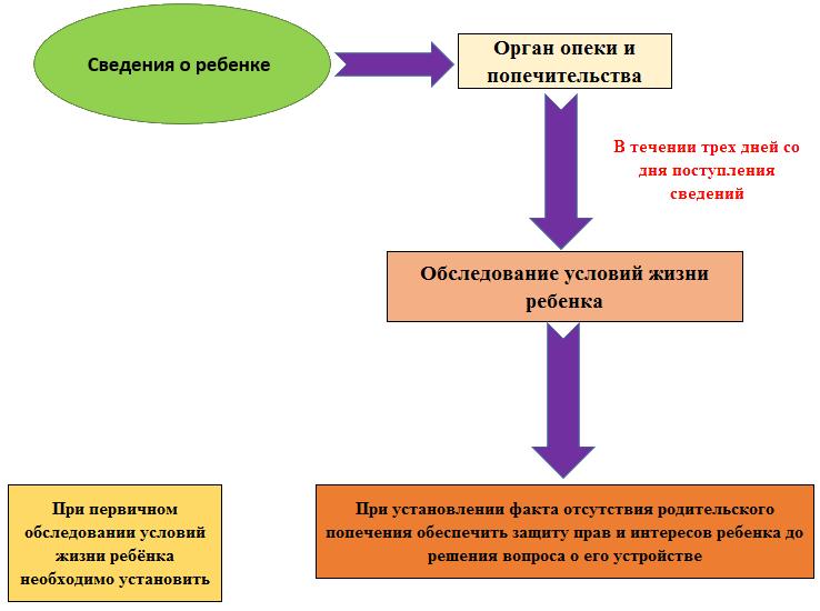 семейный кодекс органы опеки